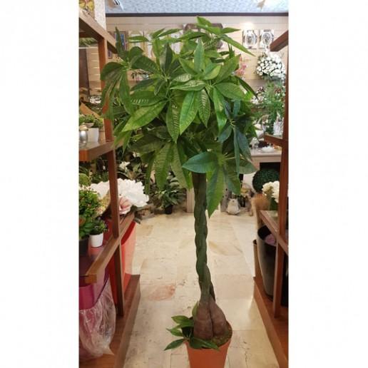 venta de pachira artificial planta para decorar