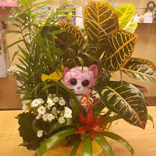 cesta de mimbre con distintas plantas